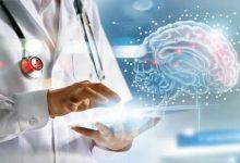 Photo of علماء: لهذه الأسباب تدمر السمنة وظائف الجهاز العصبي والدماغ
