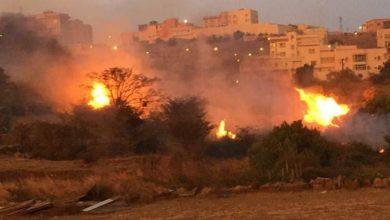"Photo of بالصور: حريق كثيف بمجموعة أشجار في قرية المصرخ يستنفر ""مدني الباحة"""