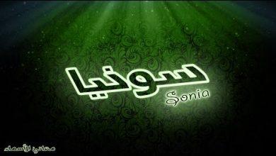 Photo of معنى اسم سونيا وصفات حاملة هذا الاسم Sonia