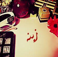 Photo of ابيات شعر باسم زينة , معنى اسم زينة
