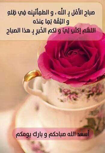 صباح الامل بالله والطمأنينه في ظله والثقه بما عنده , اللهم إكتب لي ولكم الخير بهذا الصباح
