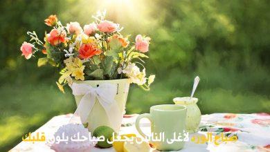 Photo of صور صباح الورد واجمل رسائل صباحية مكتوبة