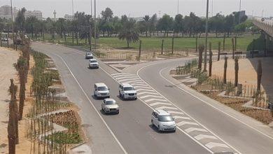 Photo of تنفيذ الأعمال التجميلية الطبيعية لمنطقة جسر الشيخ زايد بـ5 ملايين درهم