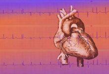 Photo of المؤشرات الصحية لتسارع نبض القلب وتباطؤه