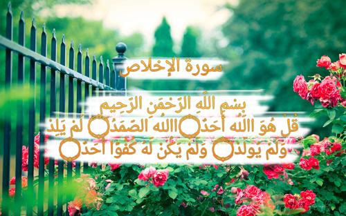 صور اسلامية مكتوب عليها آيات من القرآن انستقرام