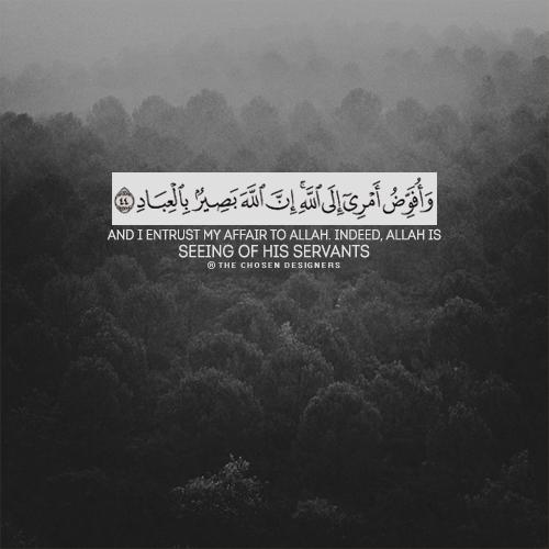 صور اسلامية مكتوب عليها آيات من القرآن متنوعة