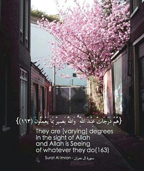 صور اسلامية مكتوب فيها آيات من القرآن منوعة