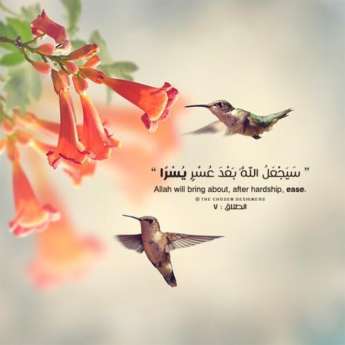 صور مكتوب عليها آيات من القرآن انستجرام