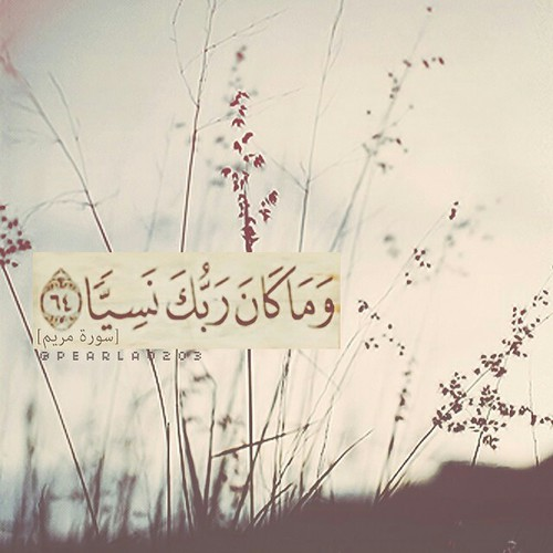 صور مكتوب عليها آيات من القرآن انستقرام