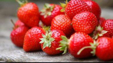 Photo of 5 أنواع من الفاكهة ذات مفعول سحري على الهضم والمناعة