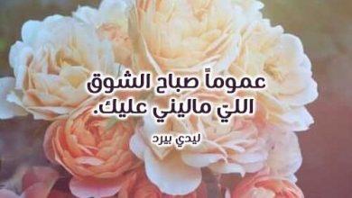 Photo of كلام صباح الحب والشوق , رسائل صباح الشوق , كلمات شوق صباحية , عبارات شوق صباحية للحبيب