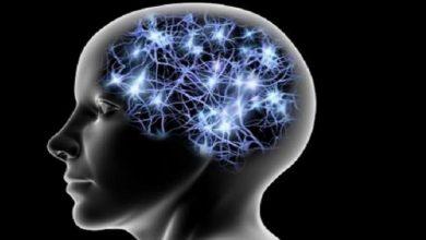 Photo of موت جذع الدِّماغ , كيف يحدث موتُ الدِّماغ , إثباتُ موت الدِّماغ , التشخيص والمعالجة
