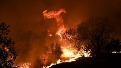 Photo of ارتفاع عدد ضحايا حرائق كاليفورنيا إلى 9 قتلى