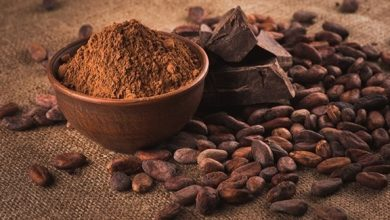 Photo of حبوب الكاكاو تحتوي على فيتامين D
