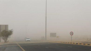 Photo of توجيهات باتخاذ إجراءات تضمن سلامة العاملين أثناء التقلبات الجوية في الإمارات