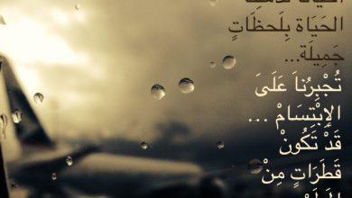 Photo of أقوال عن المطر , أمثال عن المطر , عبارات عن المطر