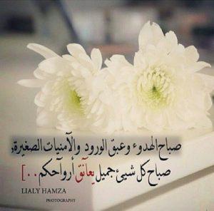 d132f76a8 كلمات صباح الخير , كلمات حب صباح الخير , اجمل كلمات صباحية للاصدقاء ...