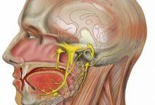 Photo of ألم العصب ثلاثي التوائم , أسباب ألم العصب ثلاثي التوائم , معالجةُ ألم العصب ثلاثي التوائم , الألمُ العصبي التالي للهربس