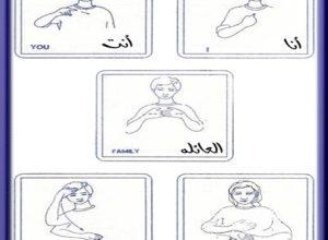 Photo of كلمات الشائعة في لغة الأشارة , صور كلمات الشائعة بلغة الأشارة
