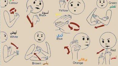 Photo of الالوان في لغة الأشارة , صور الالوان بلغة الأشارة