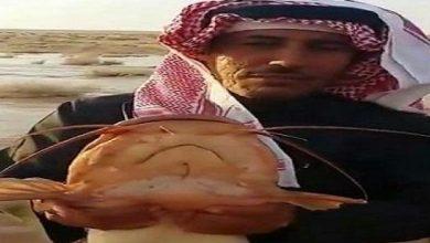 Photo of في السعودية سمك في صحراء القصيم !