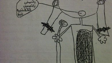 Photo of الفروق بين رسوم الذكور والإناث