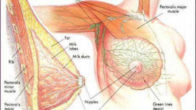 Photo of سرطان الثدي و كيفية أكتشافه بالصور