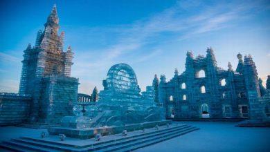 "Photo of حديقة صينية تتحول إلى ""مملكة جليدية"""
