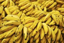 Photo of تعرفى على الفوائد العظيمة للموز وقشر الموز