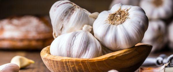 فوائد الثوم Garlic