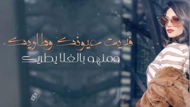 Photo of كلمات أغنية فديت عيونك وطاريك – ديانا حداد مكتوبة