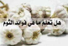 Photo of ما هى فوائد الثوم