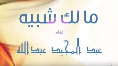 Photo of كلمات أغنية مالك شبيه – عبد المجيد عبدالله مكتوبة