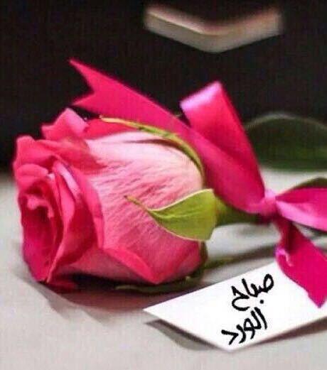 صباح الورد من تويتر
