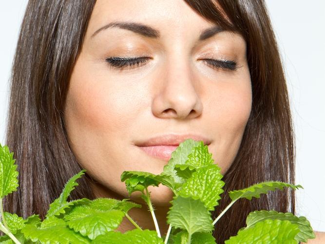 فوائد النعناع المذهلة لتعزيز صحة الجسم
