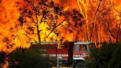 Photo of حرائق الغابات تدمر 30 منزلاً في فيكتوريا الأسترالية