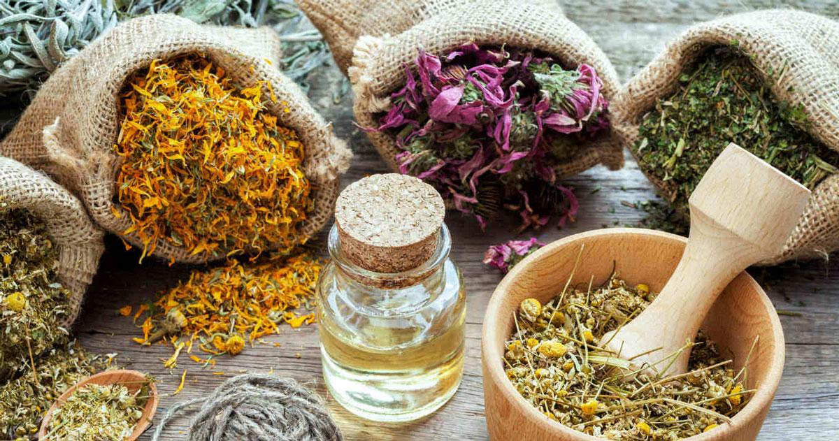 أعشاب طبيعية لعلاج المعدة والقولون