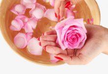 Photo of فوائد استخدام زيت الورد الاصلي