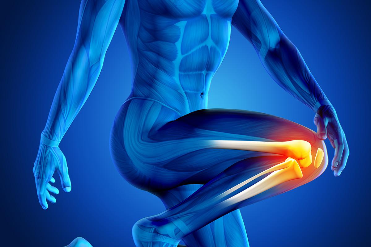إلتهابات مفصل الركبة