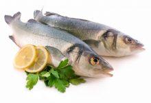 Photo of اعراض حساسية السمك