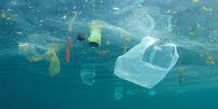التلوث المائي