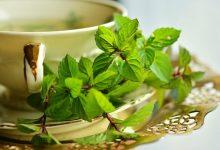 Photo of الشاي الاخضر لصحه أفضل