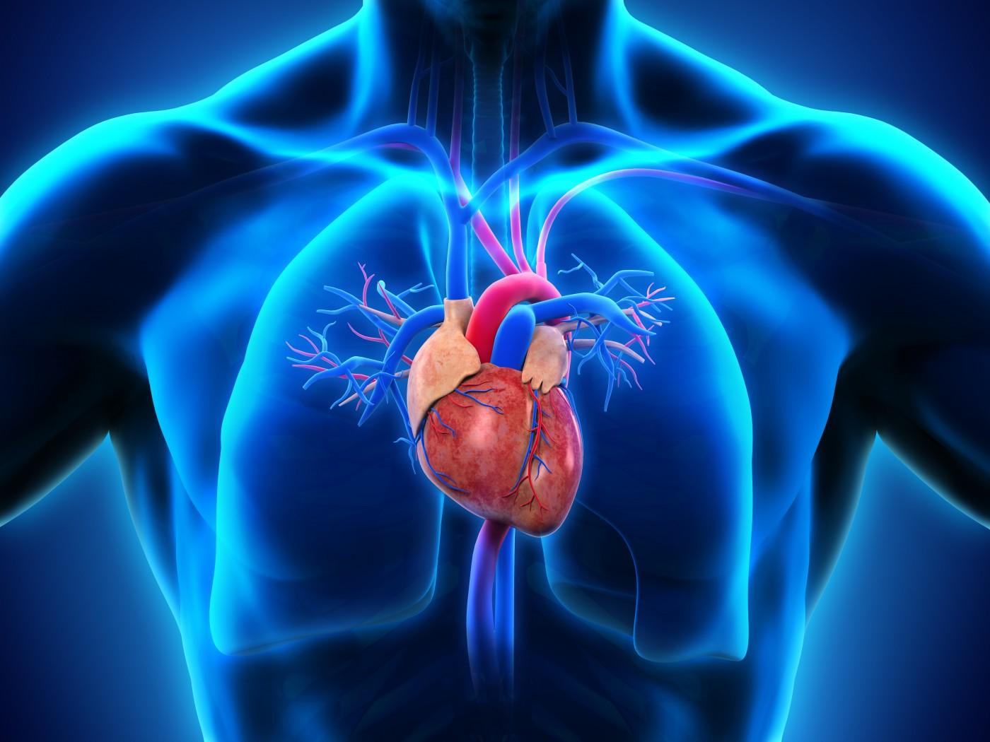 علاج ارتفاع ضغط الدم بالطب النبوي