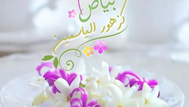 Photo of أدعية صباح الخير – اللهم هدوء النفس اللهم عطر صباحنا بنسمات الإطمئنان