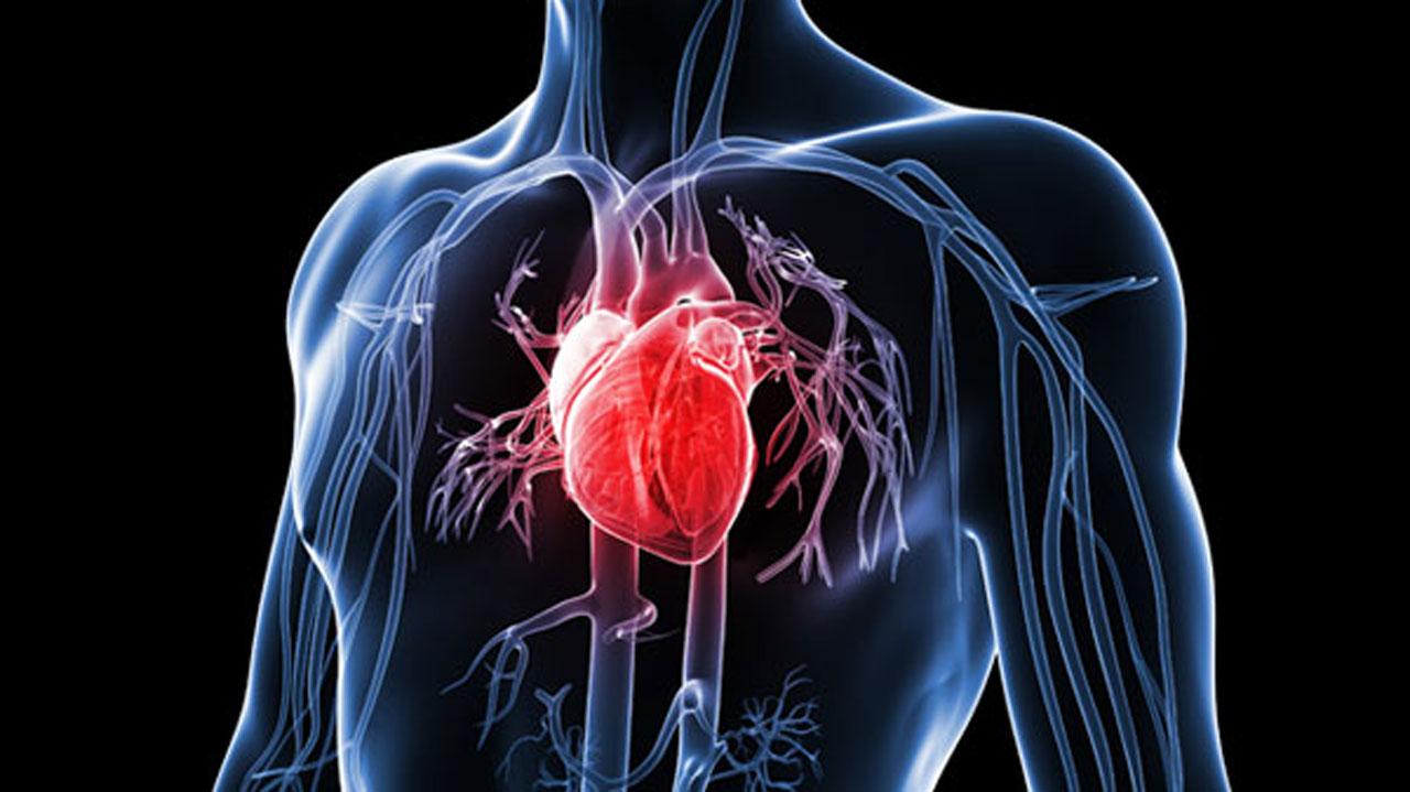 الوقاية من ارتفاع انزيمات القلب