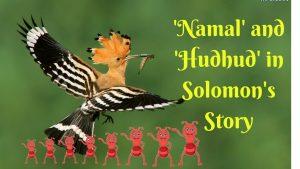 قصة هدهد نبي الله سليمان