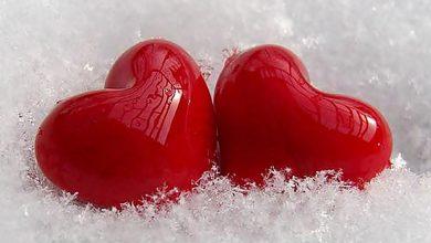 Photo of أجمل أقوال عن الحب