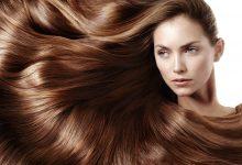 Photo of ما هي أفضل الوصفات لتطويل الشعر بسرعة ؟