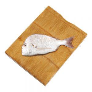 سمك موسى
