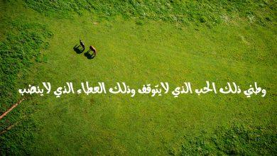 Photo of أجمل تعبير عن الوطن مكتوب قصير